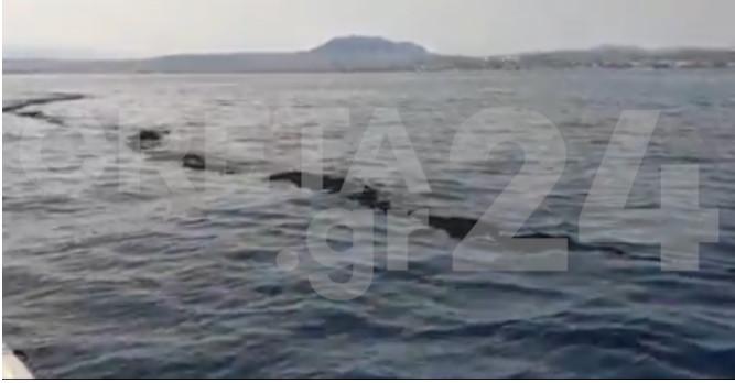 Μεγάλη θαλάσσια ρύπανση! Εικόνες ΣΟΚ – Συναγερμός στις λιμενικές αρχές της Κρήτης (pics)